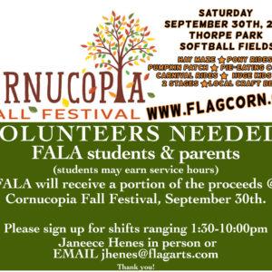 Volunteer And Service Opportunities